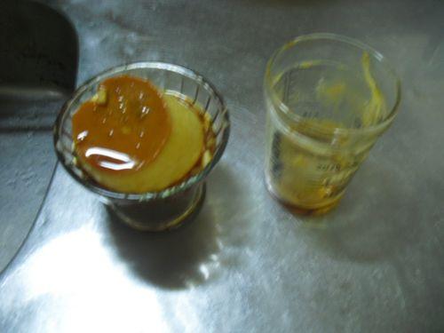 06) 盛付け失敗作。カキ氷容器の底が球面になっているので、ドテッっと横倒しになった。そぉ~っと引き起こした瞬間に撮った。