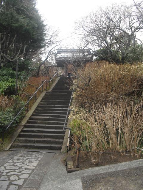 01) 雪の日、鎌倉「東慶寺」梅の頃。11.02.12 _ 11:19am頃~