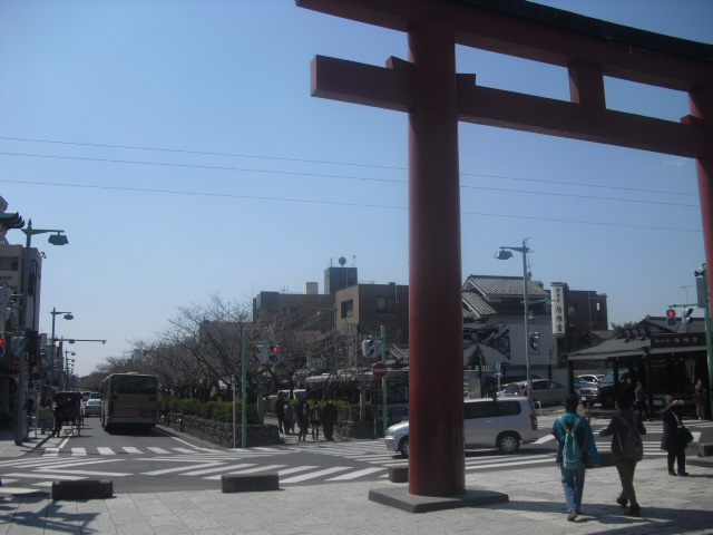 01) 鎌倉「鶴岡八幡宮」 ' 三の鳥居 ' から見た ' 段葛 '。 桜の開花には、もう少し。
