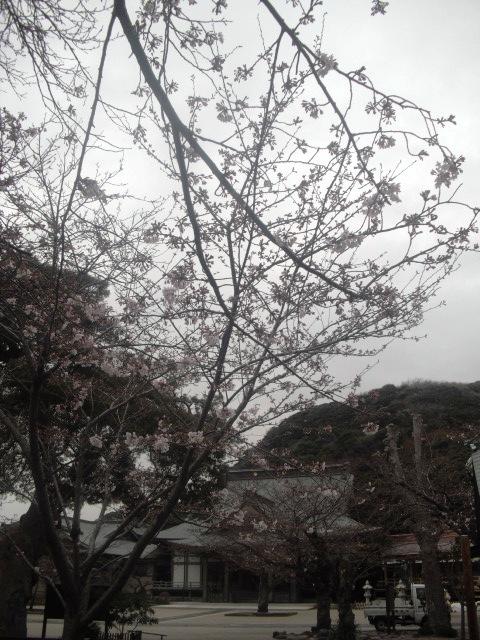 08) 「光明寺」 _ 鎌倉市材木座