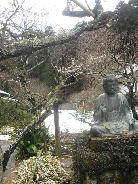 13) 雪の日、鎌倉「東慶寺」梅の頃。11.02.12