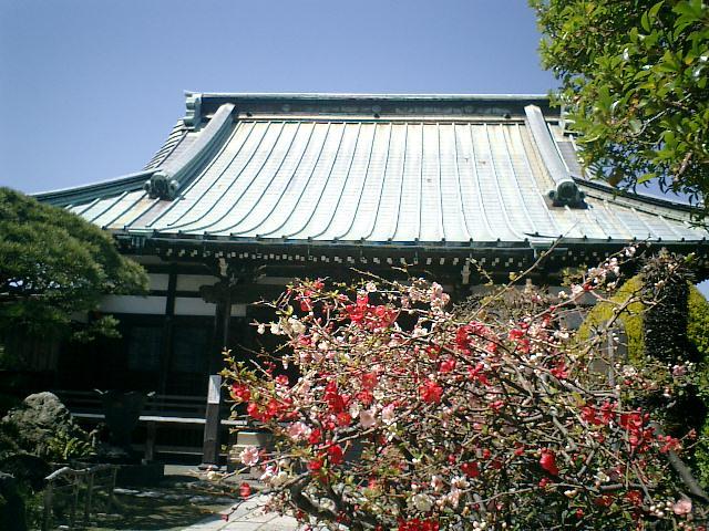 06) 鎌倉市材木座「九品寺」
