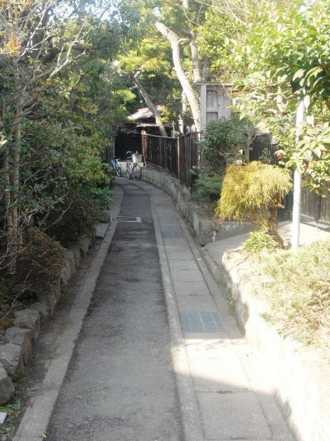 03) 近所に月極駐車場が少ないからクルマ所有者には住み難いかもしれないが、古くから住まわれているのであろう広い庭の家が多い。奥の塀が「音松稲荷」。