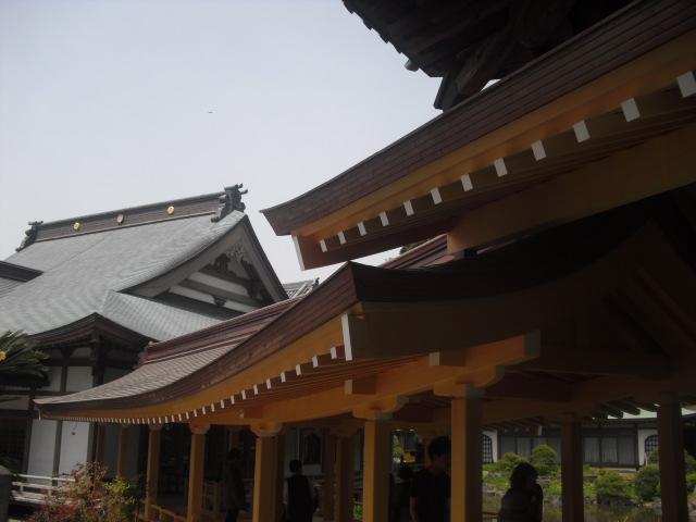02) 鎌倉「光明寺」記主庭園にツツジ咲く頃 _ 11.05.02