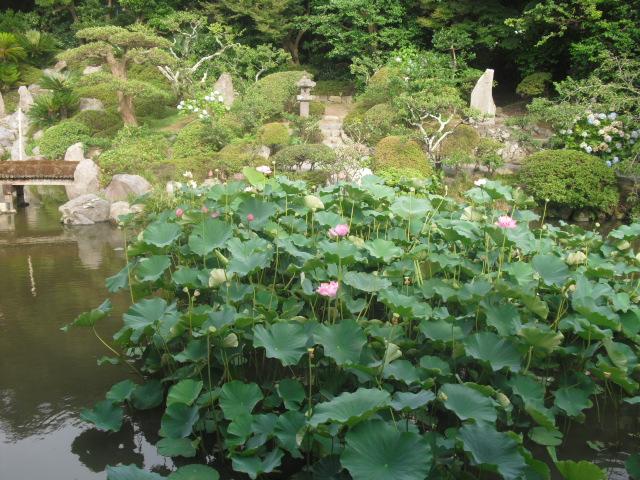 08) 鎌倉「光明寺」