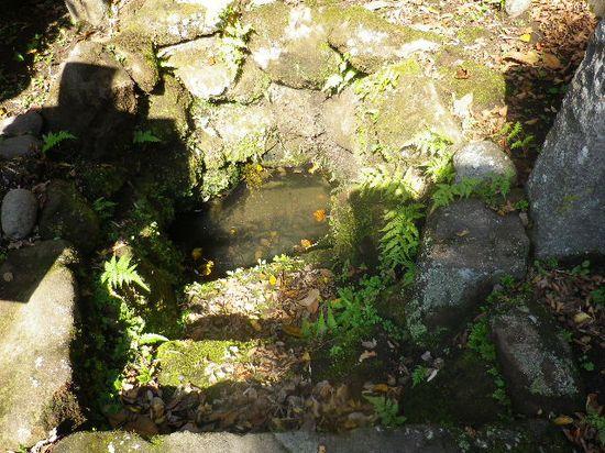 04) 鎌倉十井の一つ  「泉の井」 _ 鎌倉市扇ガ谷2丁目18
