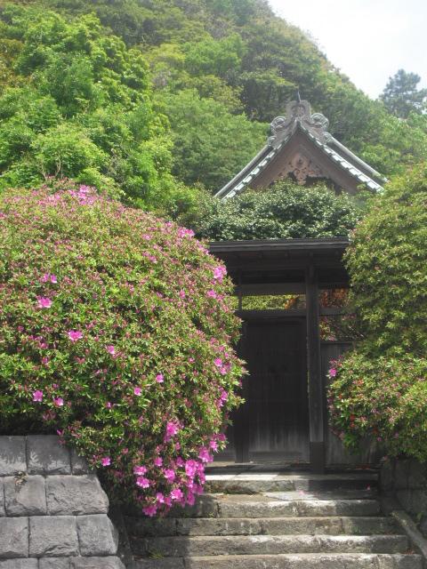 05) 鎌倉「祇園山安養院 田代寺」