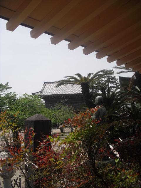 03) 鎌倉「光明寺」記主庭園にツツジ咲く頃 _ 11.05.02