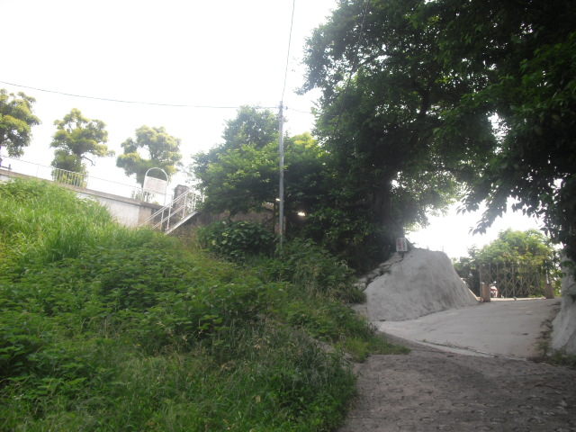 03) 最奥の「長谷配水池広場」下。 ここまでの道は、全て舗装済み。右は個人宅。草で見えないが、左方向に人が通ることが出来る舗装された坂道&階段がある。