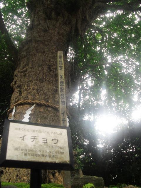 08) 鎌倉「荏柄天神社」