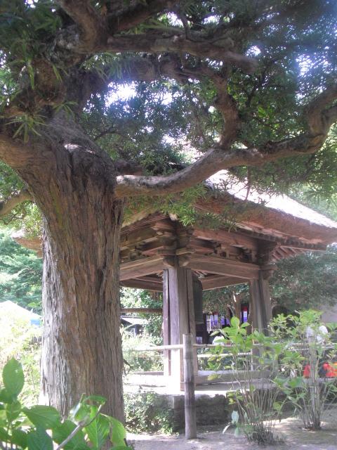 07)  「円応寺」 _ 鎌倉市山ノ内