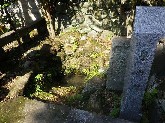 03) 鎌倉十井の一つ  「泉の井」 _ 鎌倉市扇ガ谷2丁目18