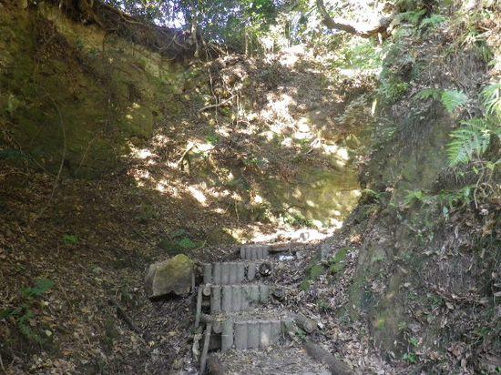 04) 「天園ハイキングコース」への古道登山口。 _ 9:56am頃~