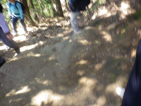 14) 大きな岩から降りてゆくところ _ 10:15am頃
