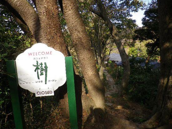 23) 木陰で見づらいが、約50mほど先に「カフェテラス 樹(いつき)ガーデン」の屋根が見える。因みに、店で休憩して後に「長谷大谷戸トンネル」付近へ下山も可能。