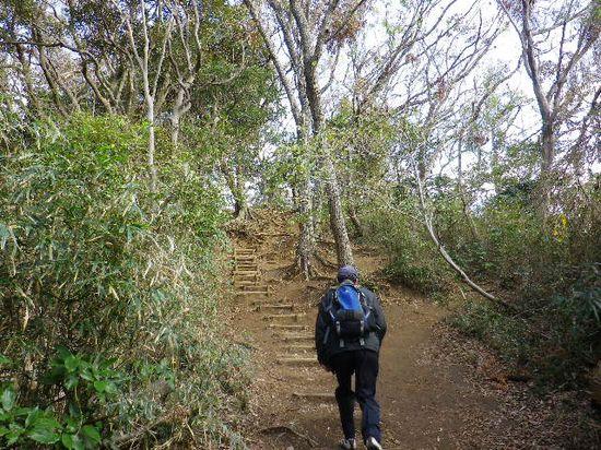 24) 「大仏ハイキングコース」の、また更に上り坂を進行中 _ 9:56am頃