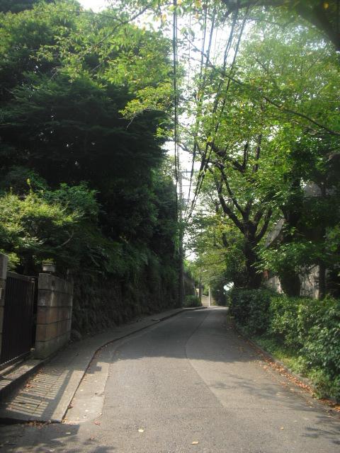 16) 太い道路から逸れて、「棟方版画美術館」に至る脇道へ入る _ 10:19am