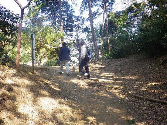 10) 途中の撮影を省いて、「天園ハイキングコース」合流地点着  _ 10:09am頃