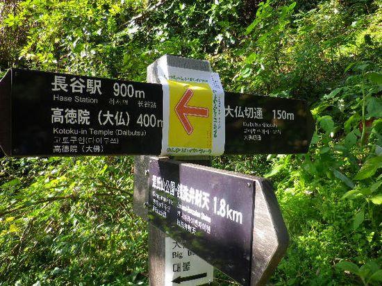 17)  「大仏ハイキングコース」道標。左方向から手前方向へ進行。因みに、右方向は 伝 '大仏切通し'。 _  9:37am頃