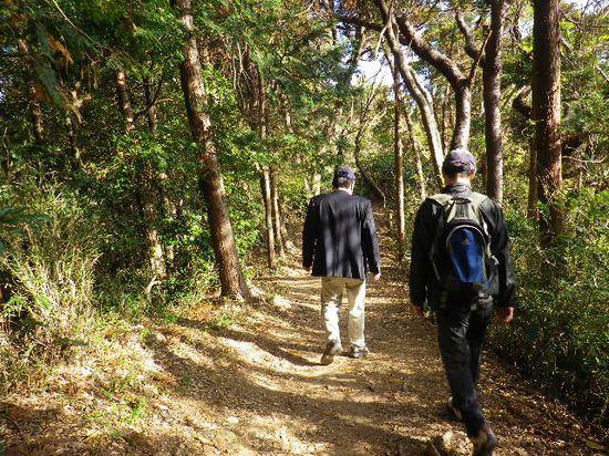20)  「大仏ハイキングコース」の平坦な尾根道を進行中 _ 9:43am頃