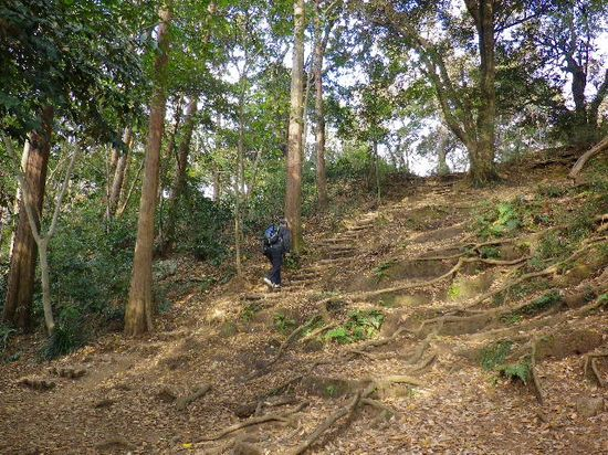27) ほぼ最後の急坂を、M.O.2号氏&私M.O.1号が登る。隊長Y.K.氏は、階段ではない迂回路を進行。 _ 10:00am頃