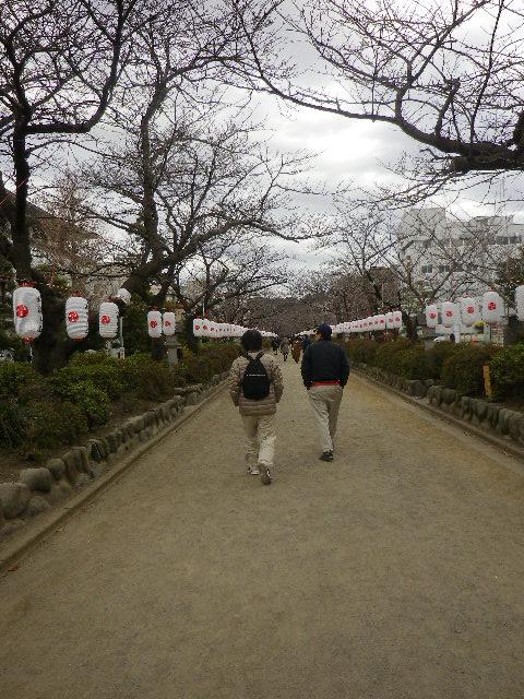 3-02) 参道 ' 段葛 ' を進行中