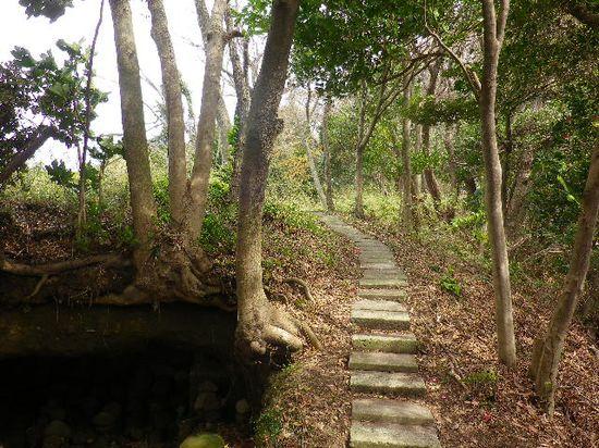 4-14) 「覚賢塔」への道を、板塀の隙間から撮った。 左下は、やぐら。 _ 10:20am頃