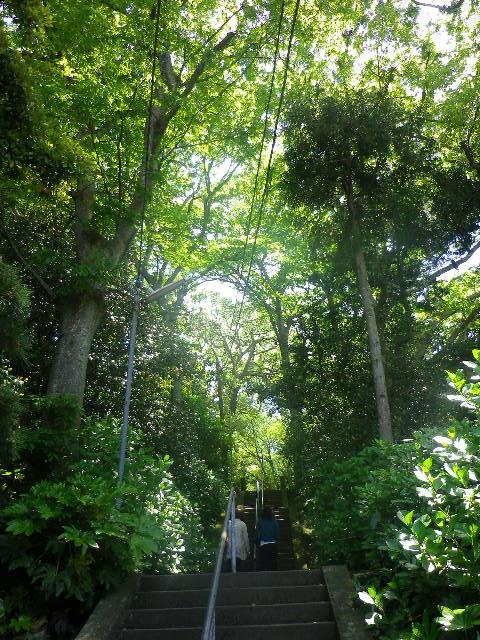 03) ' 方丈門 ' から、階段の先を見る。