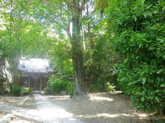 01) 鎌倉「蛇苦止堂」 _ 鎌倉市大町