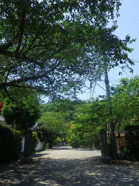 01)  日蓮宗「行時山 光則寺」 参道 _ 鎌倉市長谷