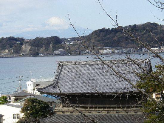 11-05) 「光明寺」山門と富士山