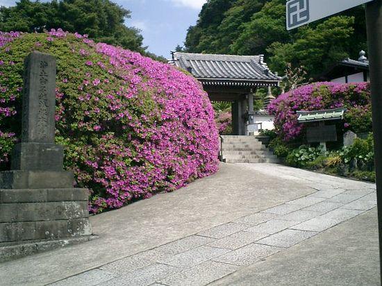 04)鎌倉市大町「安養院」