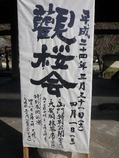 01) 3/31&4/01「観桜会」の告知