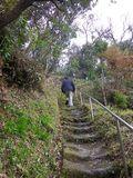 4-06) 湿度が低い木・土・日曜のみ有料公開の ' 二階 ' から → ' 三階 '  へ登る道。 _ 10:17am頃