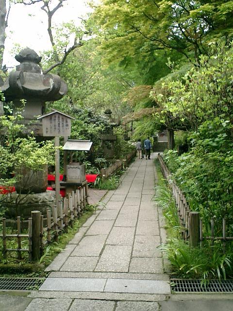 05)鎌倉市大町「安国論寺」山門の外から境内を観る