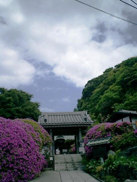 05)鎌倉市大町「安養院」山門を観る