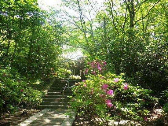 04) 階段の途中から、' 本堂 ' を見る。