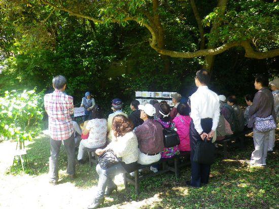 11-01) バラ園の管理人さんによる、庭園とバラの育て方について解説。