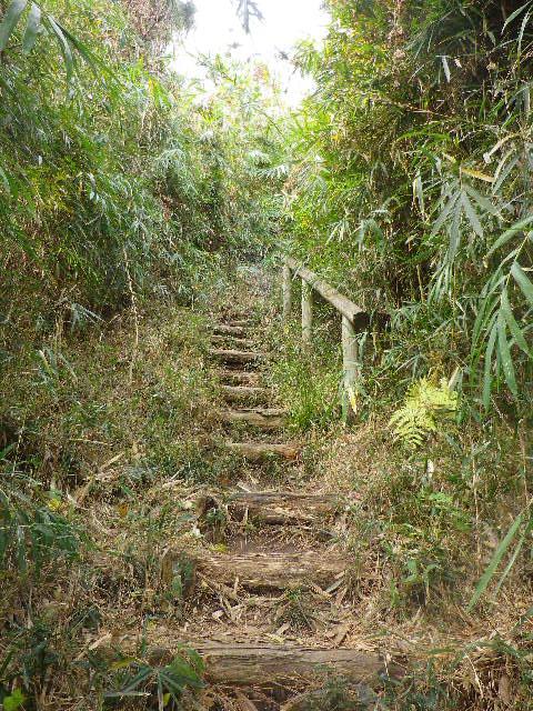 """12) 03)左の道標には """" 遊歩道 """" と表示されていたので、少しだけ登ってみることにした。"""