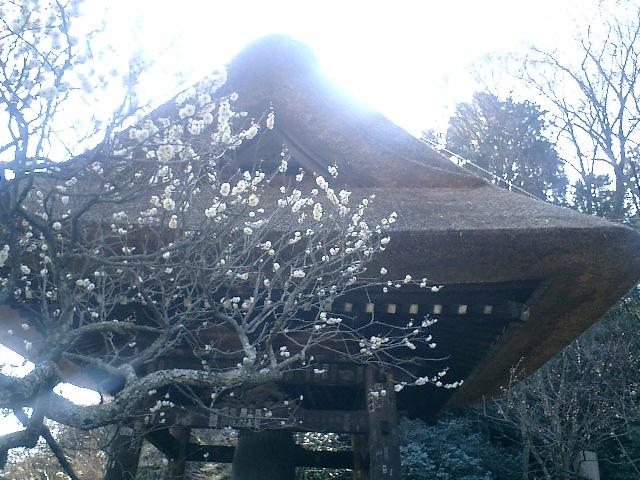 08)東慶寺、鐘楼