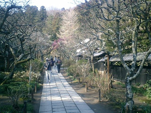 09)東慶寺、参道