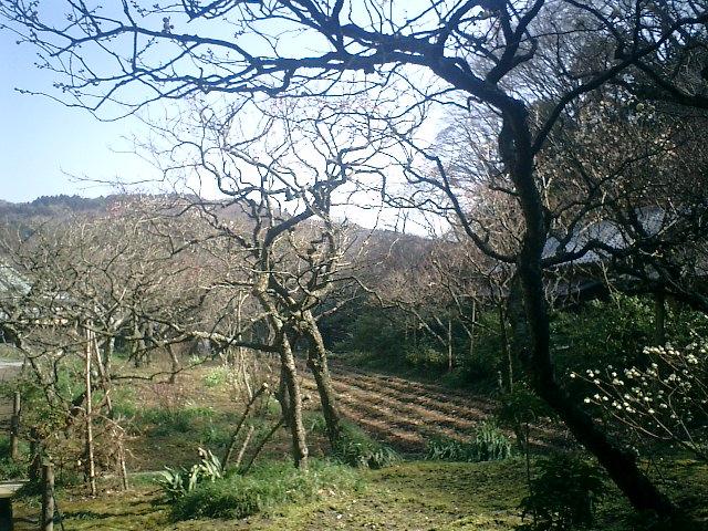 27)東慶寺、境内庭園
