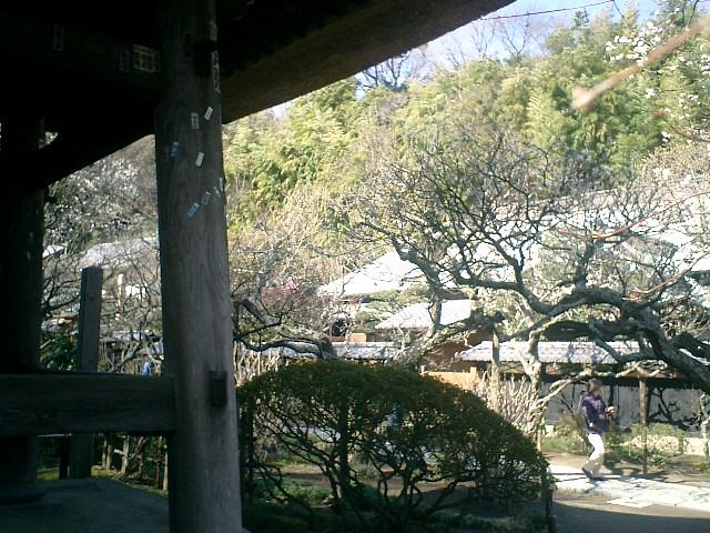35)東慶寺、鐘楼下から水月堂を観る