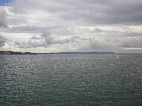 12-12) 堤防先端区域から、東方向を見る。