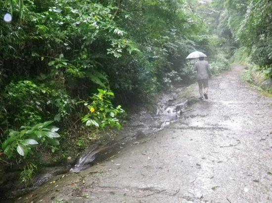 12)  降雨での泥濘み/水溜り を危惧していた箇所。幸いなことに難儀無しに通行できた。 _ 10;31am頃