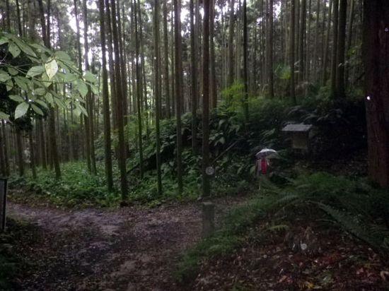 """20) ・・・ ・・・ 「熊野神社」への登り口。10:41am頃と ゴール地点着 """" お疲れ様、乾杯! """" までには余裕の時刻だが 降雨による泥濘みの程度予測がつかぬために、残念ながら"""