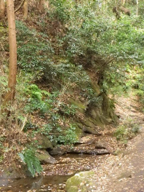 02) 紅葉名所 ' 獅子舞 ' までは行かず、「二階堂川」上流の せせらぎの音を聞きながら300mほど散策して引き返した。