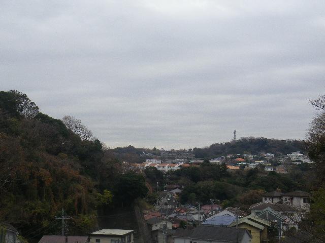 08-04) 奥の家並みは「TBS披露山庭園住宅」で、TV電波塔見える背後の山は「披露山公園」。