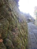 16-02) 民家の苔生す石垣と、' 巡礼の道 '。