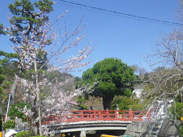 10) 奥 ' 太鼓橋 ' と、源氏池側の朱塗り橋。